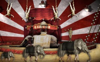 Semplicemente Circo